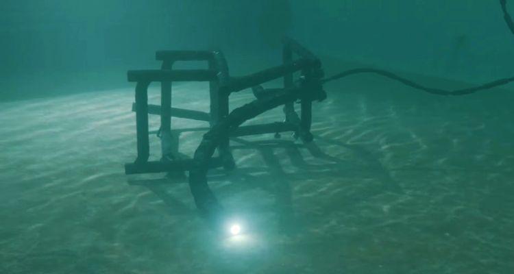 norvég robotkígyó